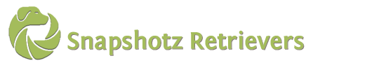 Snapshotz Retrievers logo